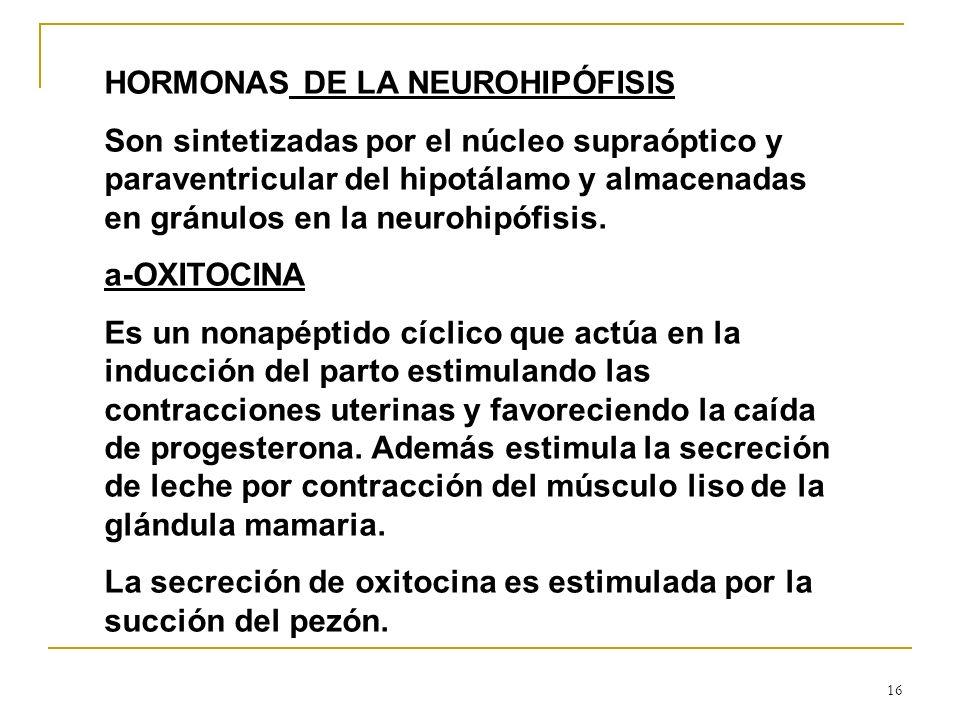 16 HORMONAS DE LA NEUROHIPÓFISIS Son sintetizadas por el núcleo supraóptico y paraventricular del hipotálamo y almacenadas en gránulos en la neurohipó