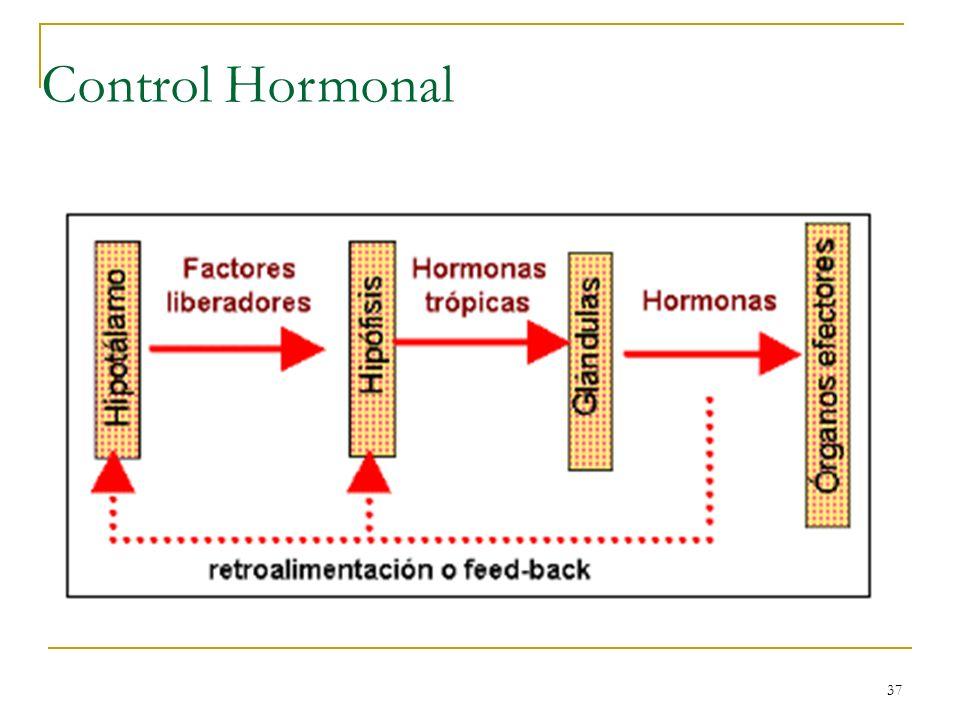 37 Control Hormonal