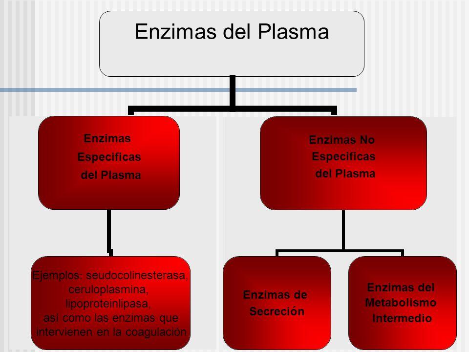 Enzimas Especificas del Plasma Ejemplos: seudocolinesterasa, ceruloplasmina, lipoproteinlipasa, así como las enzimas que intervienen en la coagulación