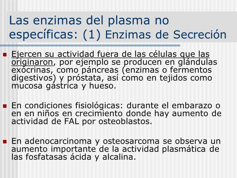 Las enzimas del plasma no específicas: (1) Enzimas de Secreción Ejercen su actividad fuera de las células que las originaron, por ejemplo se producen