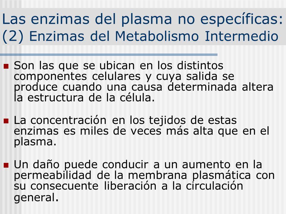 Las enzimas del plasma no específicas: (2) Enzimas del Metabolismo Intermedio Son las que se ubican en los distintos componentes celulares y cuya sali