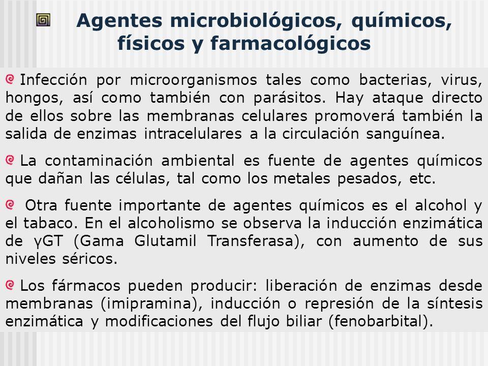 Agentes microbiológicos, químicos, físicos y farmacológicos Infección por microorganismos tales como bacterias, virus, hongos, así como también con pa