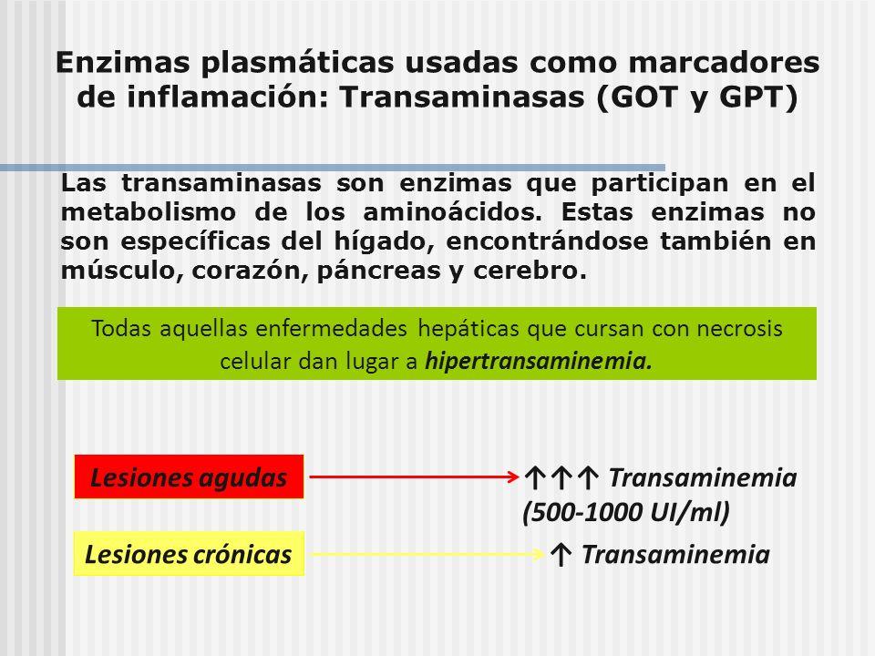 Enzimas plasmáticas usadas como marcadores de inflamación: Transaminasas (GOT y GPT) Las transaminasas son enzimas que participan en el metabolismo de