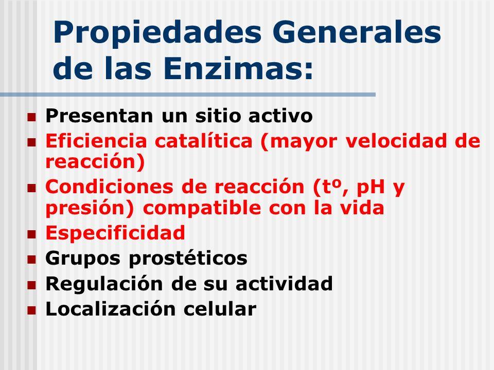 Propiedades Generales de las Enzimas: Presentan un sitio activo Eficiencia catalítica (mayor velocidad de reacción) Condiciones de reacción (tº, pH y