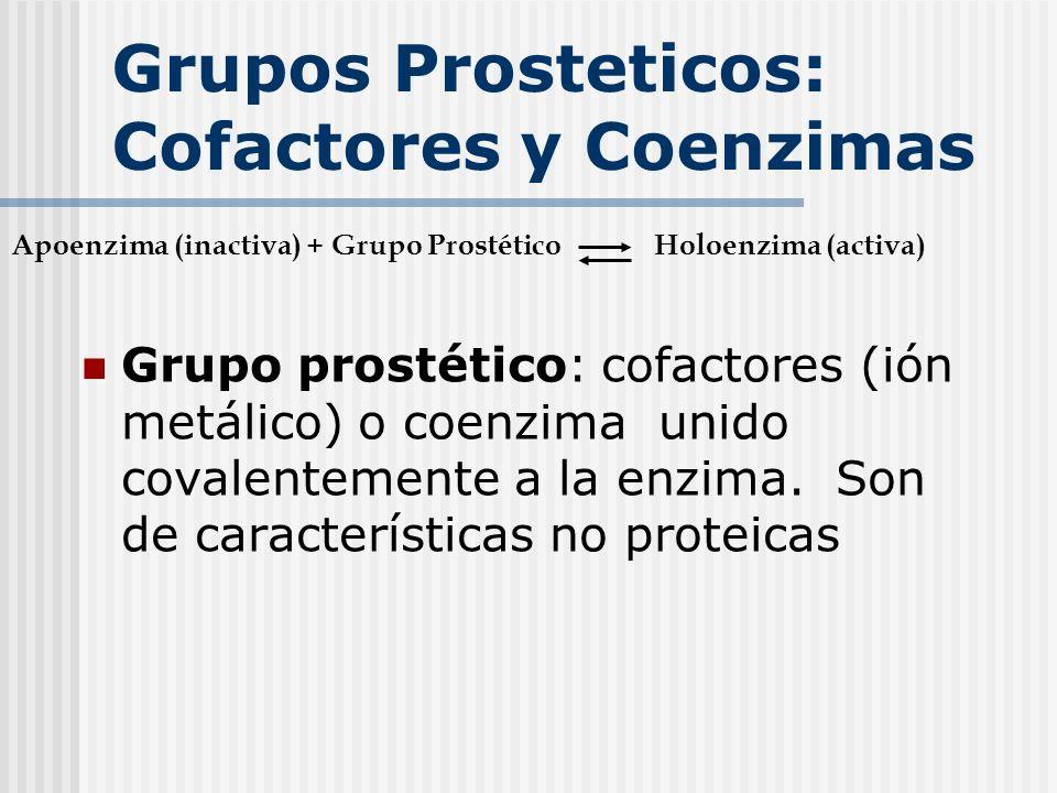 Grupos Prosteticos: Cofactores y Coenzimas Grupo prostético: cofactores (ión metálico) o coenzima unido covalentemente a la enzima. Son de característ