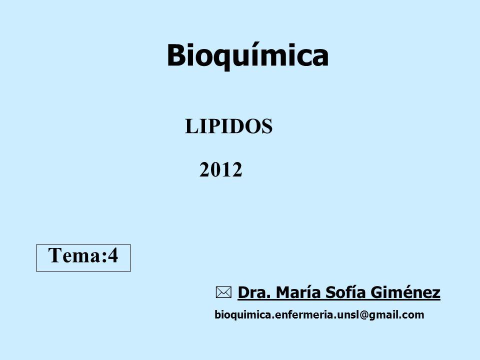 LIPIDOS Bioquímica Dra. María Sofía Giménez bioquimica.enfermeria.unsl@gmail.com Tema:4 2012