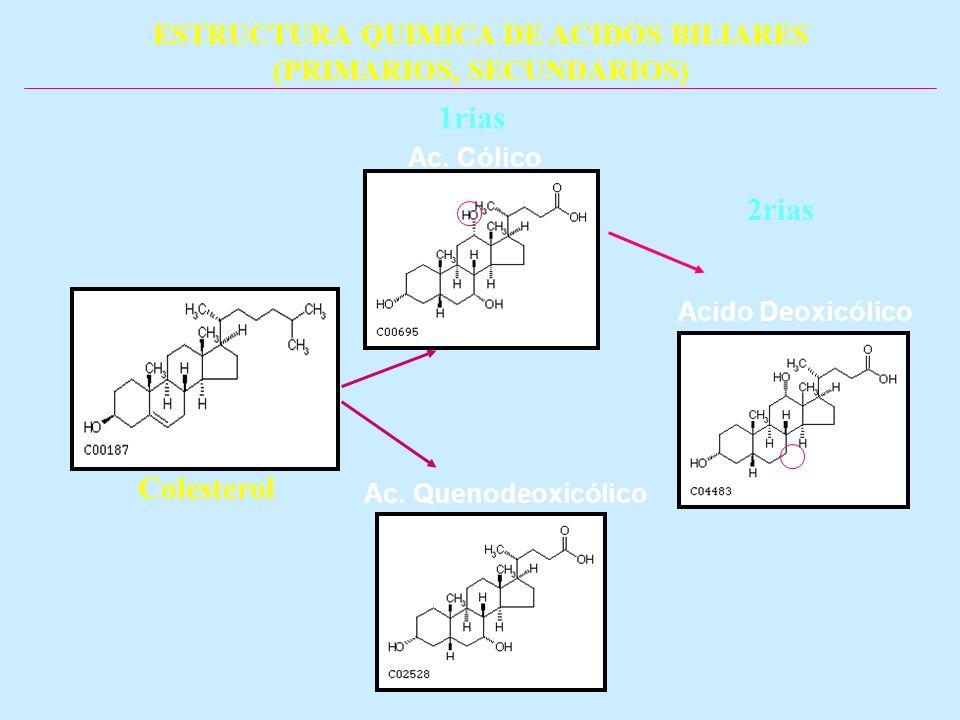 ESTRUCTURA QUIMICA DE ACIDOS BILIARES (PRIMARIOS, SECUNDARIOS) Ac. Cólico Acido Deoxicólico Ac. Quenodeoxicólico Colesterol 1rias 2rias
