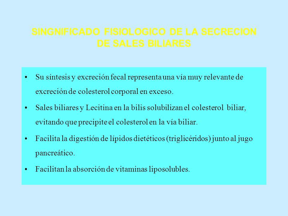 SINGNIFICADO FISIOLOGICO DE LA SECRECION DE SALES BILIARES Su síntesis y excreción fecal representa una vía muy relevante de excreción de colesterol c