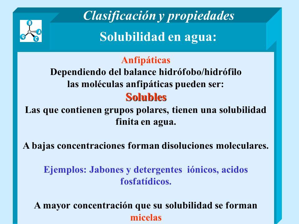 Solubilidad en agua: Anfipáticas Dependiendo del balance hidrófobo/hidrófilo las moléculas anfipáticas pueden ser:Solubles Las que contienen grupos po