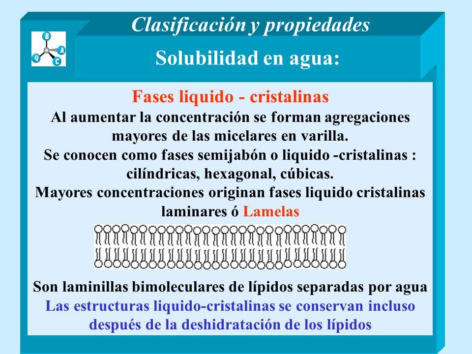 Solubilidad en agua: Fases liquido - cristalinas Al aumentar la concentración se forman agregaciones mayores de las micelares en varilla. Se conocen c