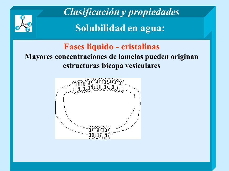 Solubilidad en agua: Fases liquido - cristalinas Mayores concentraciones de lamelas pueden originan estructuras bicapa vesiculares Clasificación y pro
