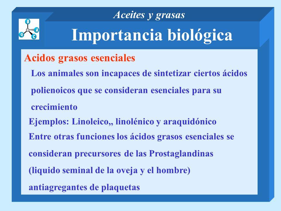 Importancia biológica Aceites y grasas Acidos grasos esenciales Los animales son incapaces de sintetizar ciertos ácidos polienoicos que se consideran