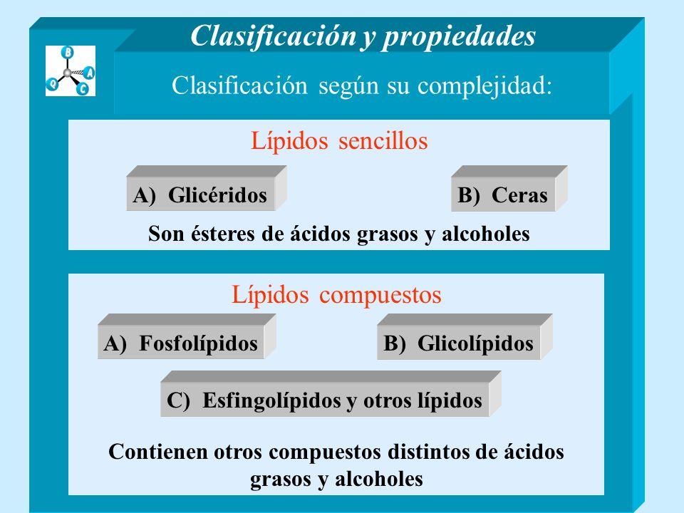 Clasificación según su complejidad: Lípidos sencillos Son ésteres de ácidos grasos y alcoholes Lípidos compuestos Contienen otros compuestos distintos de ácidos grasos y alcoholes Clasificación y propiedades A) Glicéridos B) Ceras A) FosfolípidosB) Glicolípidos C) Esfingolípidos y otros lípidos A) Glicéridos Son ésteres de ácidos grasos y glicerina A) Glicéridos Son ésteres de ácidos grasos y glicerina H-(CH 2 ) n -CO-O- CH 2 H-(CH 2 ) n´ -CO-O- CH H-(CH 2 ) n¨ -CO-O- CH 2