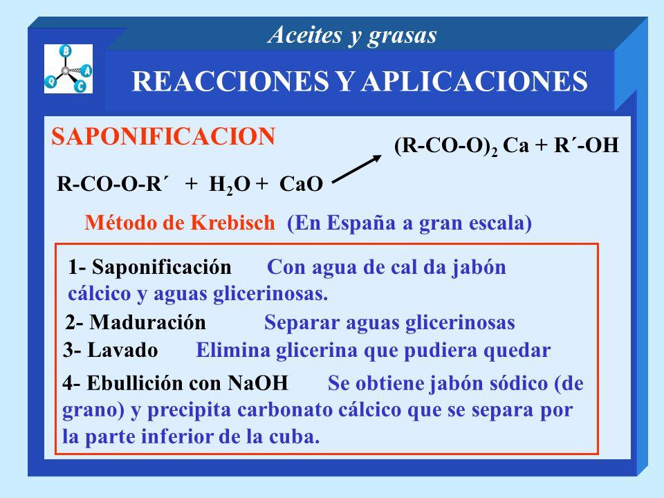 REACCIONES Y APLICACIONES Aceites y grasas SAPONIFICACION R-CO-O-R´ + H 2 O + CaO (R-CO-O) 2 Ca + R´-OH Método de Krebisch (En España a gran escala) 1