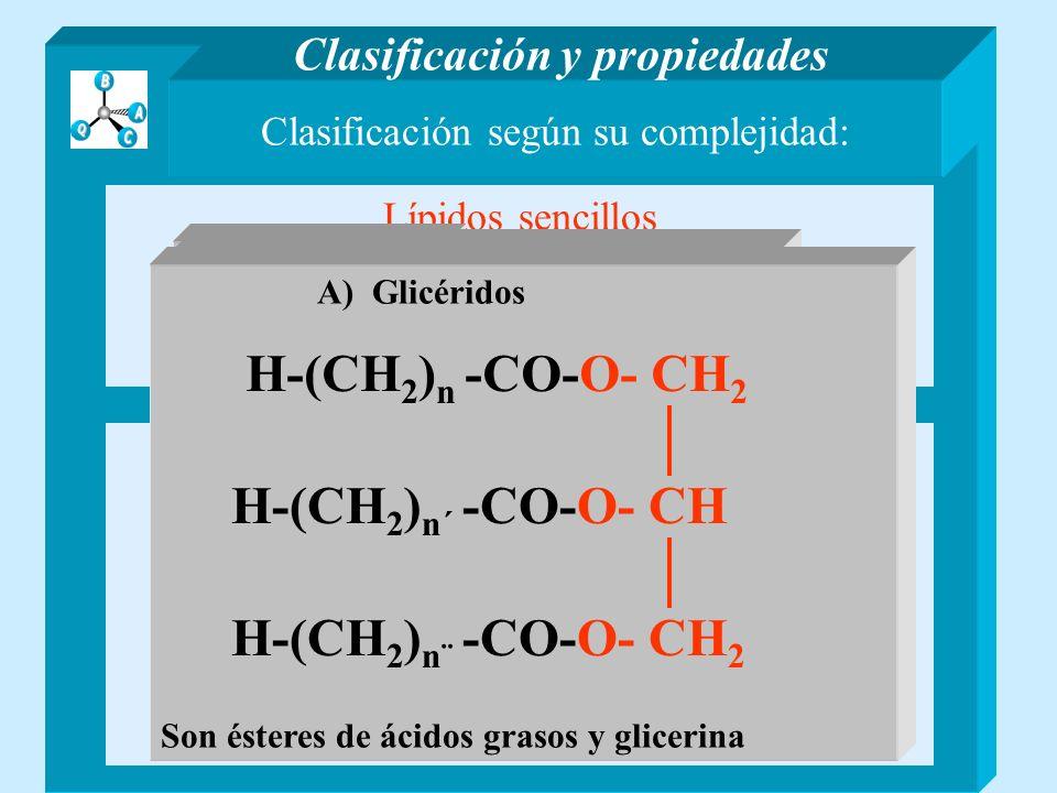 Clasificación según su complejidad: Lípidos sencillos Son ésteres de ácidos grasos y alcoholes Lípidos compuestos Contienen otros compuestos distintos de ácidos grasos y alcoholes Clasificación y propiedades A) GlicéridosB) Ceras A) FosfolípidosB) Glicolípidos C) Esfingolípidos y otros lípidos B) Ceras Funden entre 40 y 120ªC Cera de abejas: 70 A 80% ESTERES 12 A 15 % ACIDOS LIBRES 10 A 16 % HIDROCARBUROS H-(CH 2 ) n -CO H-(CH 2 ) n´ - O n´ de 19 a 31 n de 12 a 20