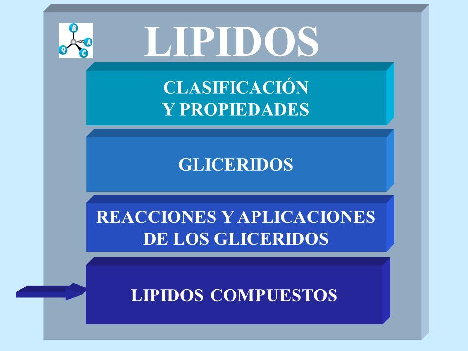 LIPIDOS CLASIFICACIÓN Y PROPIEDADES GLICERIDOS REACCIONES Y APLICACIONES DE LOS GLICERIDOS LIPIDOS COMPUESTOS