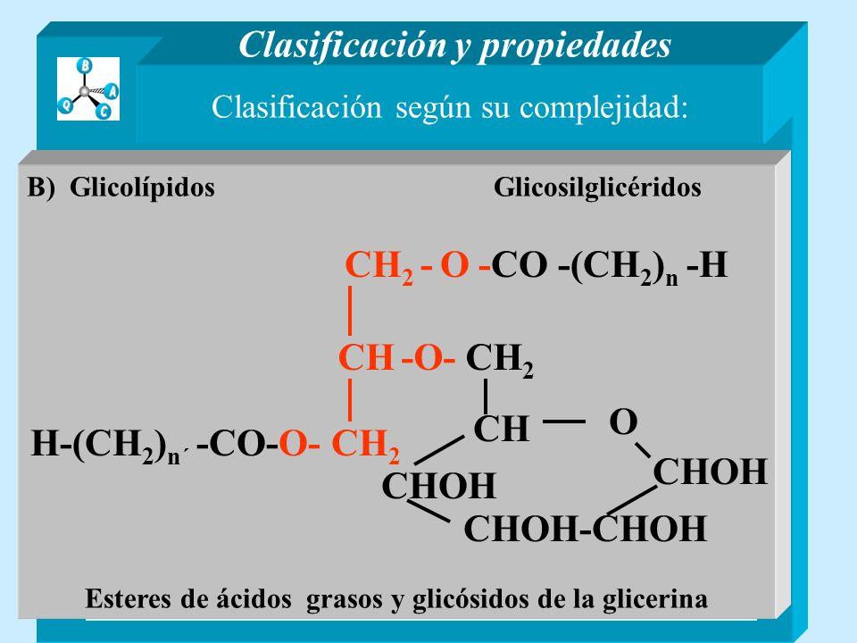 Clasificación según su complejidad: Lípidos sencillos Son ésteres de ácidos grasos y alcoholes Lípidos compuestos Contienen otros compuestos distintos de ácidos grasos y alcoholes Clasificación y propiedades A) GlicéridosB) Ceras A) FosfolípidosB) Glicolípidos C) Esfingolípidos y otros lípidos Derivados de esfingosina CH 3 -(CH 2 ) 12 -CH=CH-CH-CH- CH 2 NH-X O- YHO (X=Y=H) Ejemplo Ceramidas X=-COR Y=H