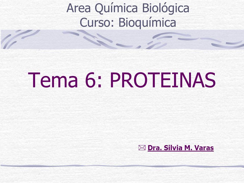 Tema 6: PROTEINAS Area Química Biológica Curso: Bioquímica Dra. Silvia M. Varas