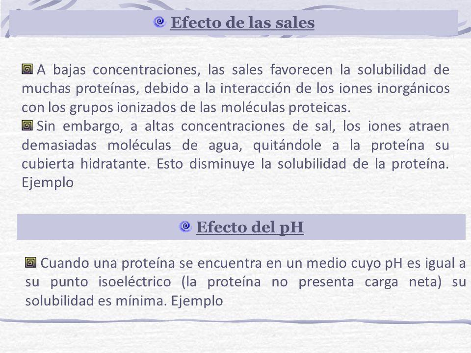 A bajas concentraciones, las sales favorecen la solubilidad de muchas proteínas, debido a la interacción de los iones inorgánicos con los grupos ioniz