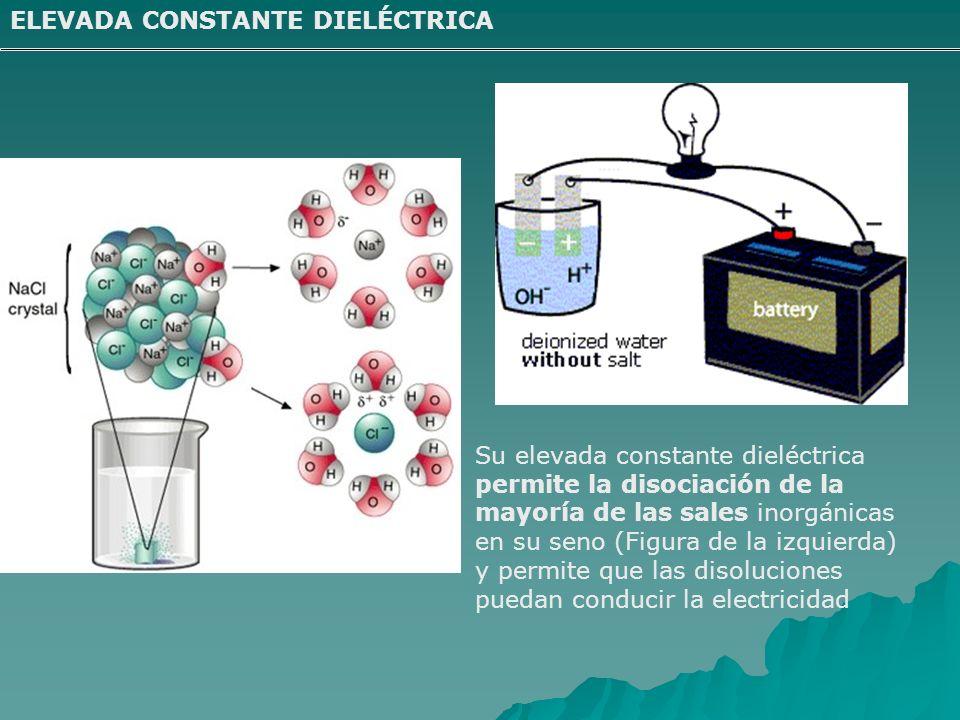 ELEVADA CONSTANTE DIELÉCTRICA Su elevada constante dieléctrica permite la disociación de la mayoría de las sales inorgánicas en su seno (Figura de la izquierda) y permite que las disoluciones puedan conducir la electricidad