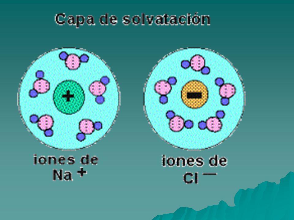 2-Es el vehículo necesario para la circulación de los nutrientes en el organismo.