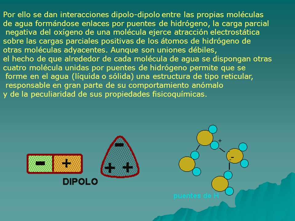Por ello se dan interacciones dipolo-dipolo entre las propias moléculas de agua formándose enlaces por puentes de hidrógeno, la carga parcial negativa