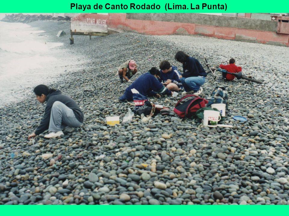 Playa de Canto Rodado (Lima. La Punta)