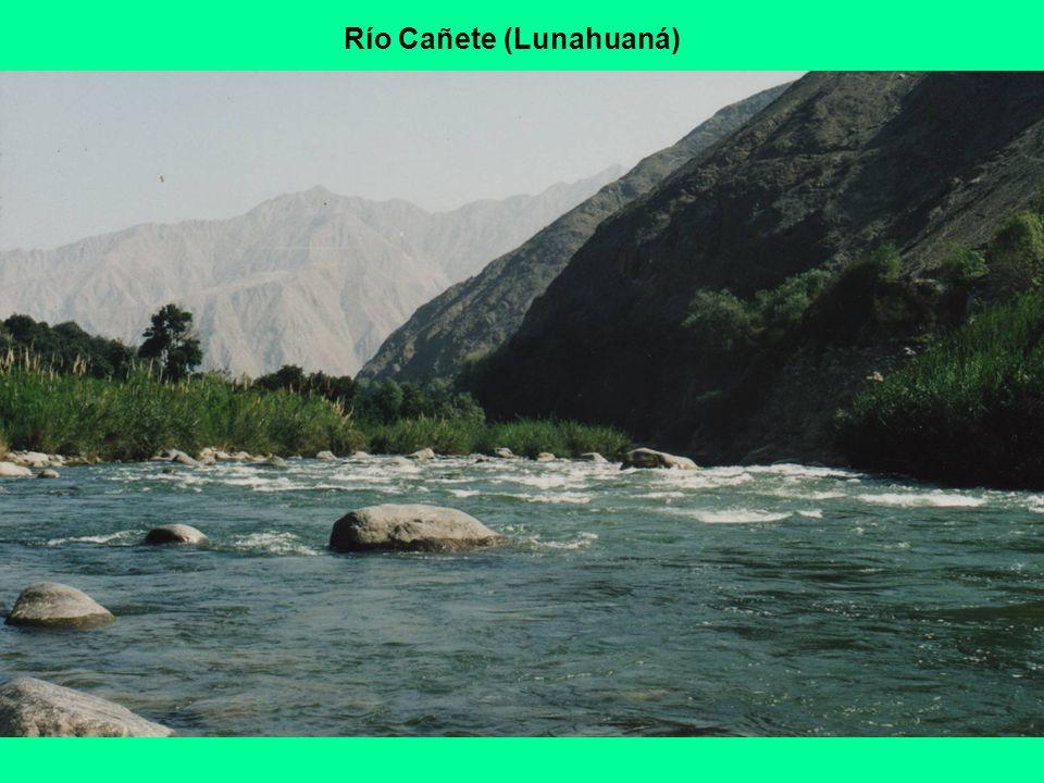 Río Cañete (Lunahuaná)