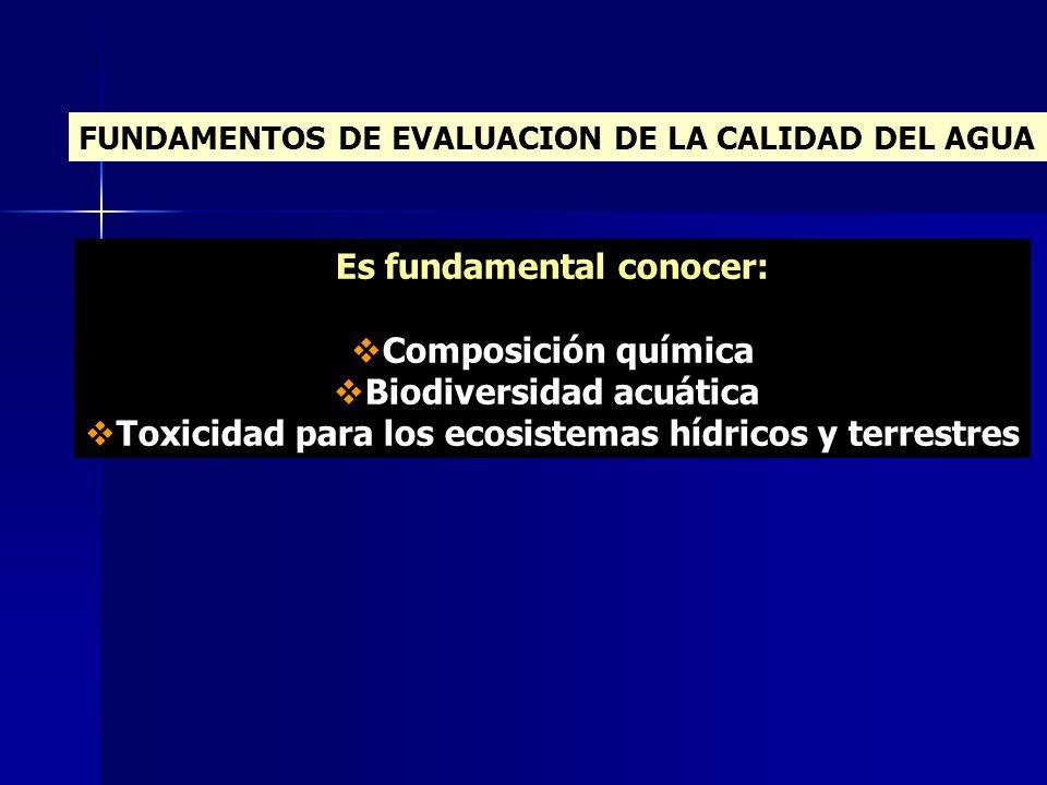 FUNDAMENTOS DE EVALUACION DE LA CALIDAD DEL AGUA Es fundamental conocer: Composición química Biodiversidad acuática Toxicidad para los ecosistemas híd