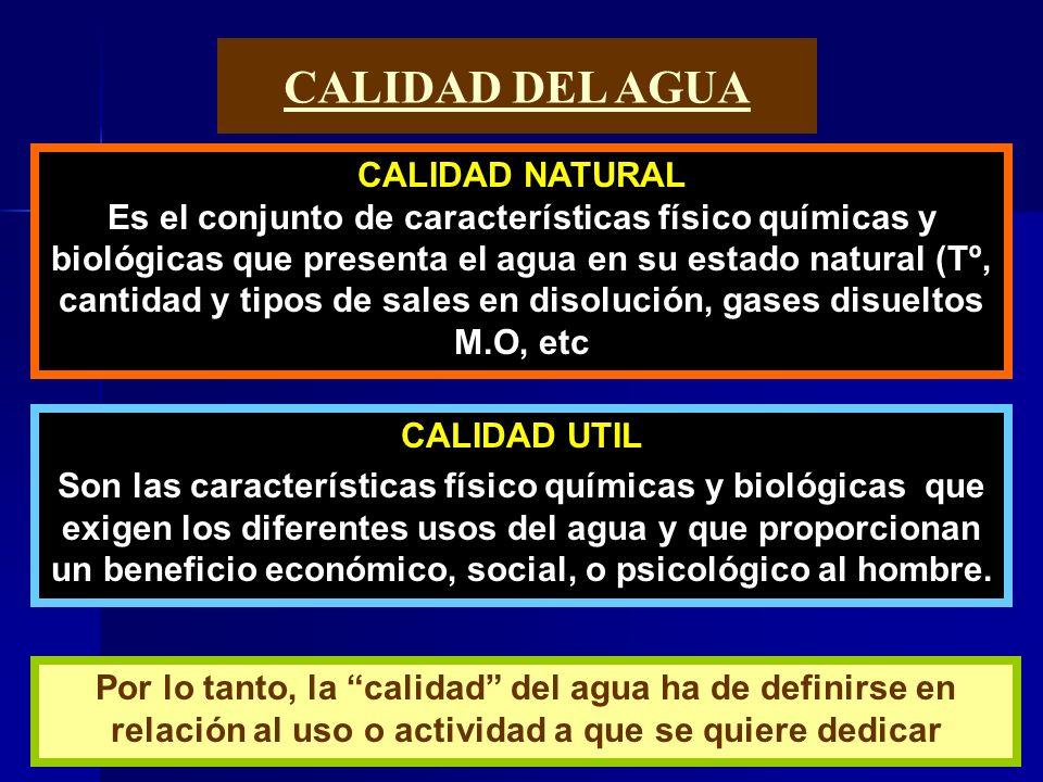 CALIDAD DEL AGUA CALIDAD NATURAL Es el conjunto de características físico químicas y biológicas que presenta el agua en su estado natural (Tº, cantida
