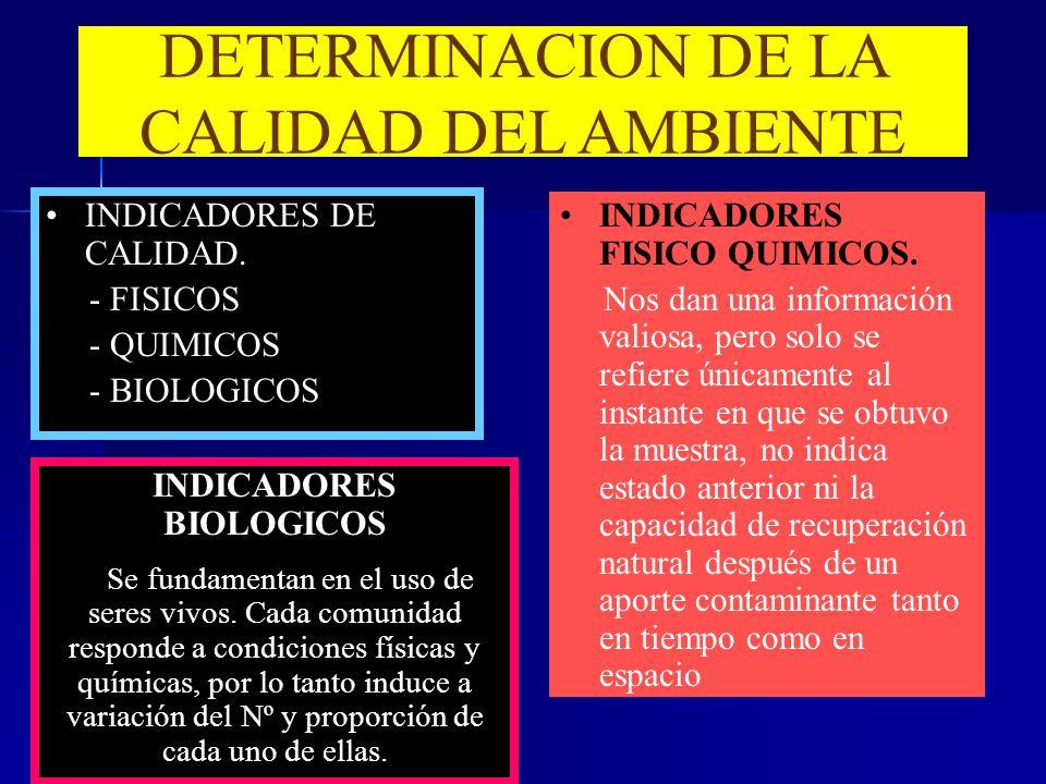 DETERMINACION DE LA CALIDAD DEL AMBIENTE INDICADORES DE CALIDAD. - FISICOS - QUIMICOS - BIOLOGICOS INDICADORES FISICO QUIMICOS. Nos dan una informació