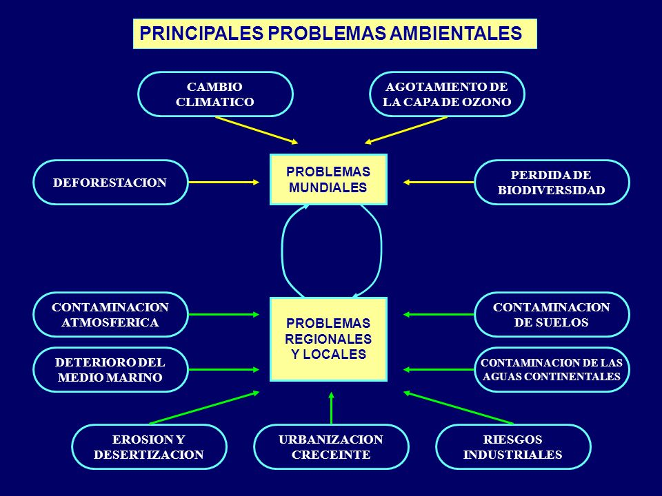 PROBLEMAS MUNDIALES PROBLEMAS REGIONALES Y LOCALES CONTAMINACION ATMOSFERICA DETERIORO DEL MEDIO MARINO CONTAMINACION DE SUELOS CONTAMINACION DE LAS A