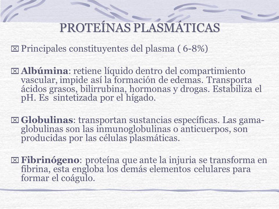 PLASMA: COMPOSICIÓN Proteínas: albúmina - globulinas Glucosa. Bilirrubina directa e indirecta. Calcio, hierro, magnesio, sodio, zinc, yodo, cobre, man