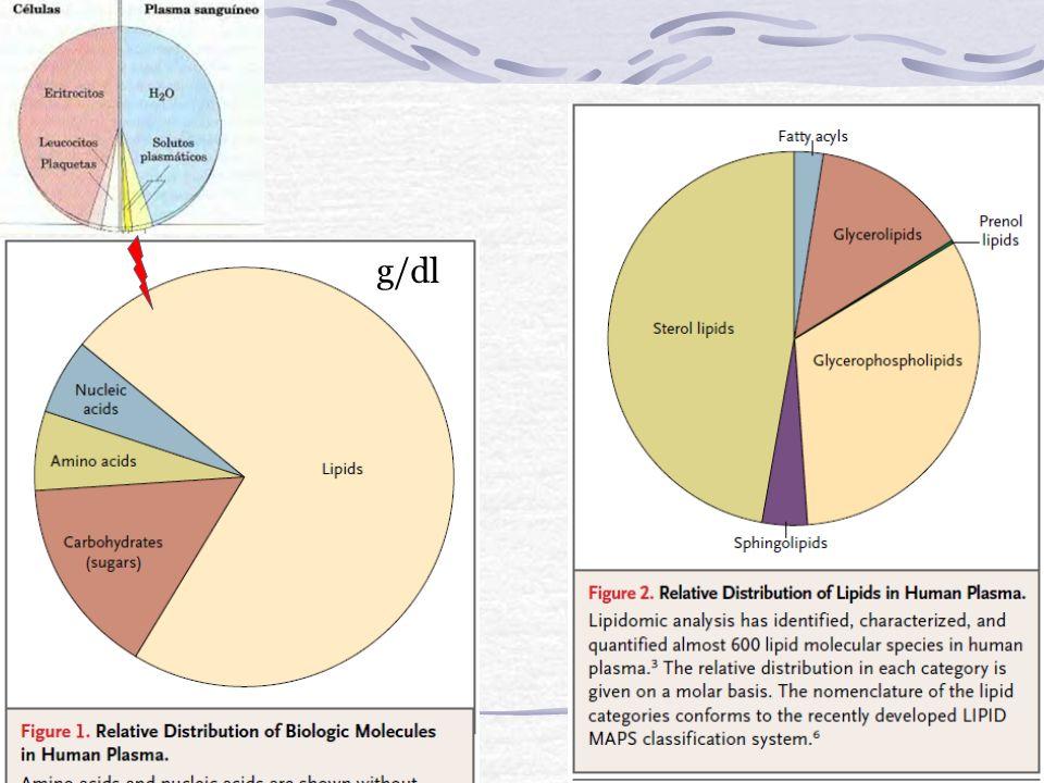 Enzimas de importancia clínica Amilasa: hidrolasa de origen pancreático o salival, escinde uniones alfa 1,4 de polímeros de glucosa: almidón y glucóge