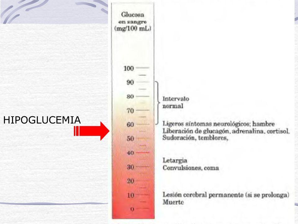 Hidratos de carbono La concentración de glucosa en sangre se llama: GLUCEMIA. Las fuentes de glucosa que mantienen este valor dentro de valores consta