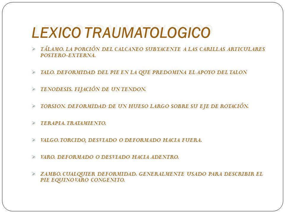 LEXICO TRAUMATOLOGICO TÁLAMO. LA PORCIÓN DEL CALCANEO SUBYACENTE A LAS CARILLAS ARTICULARES POSTERO-EXTERNA. TALO. DEFORMIDAD DEL PIE EN LA QUE PREDOM