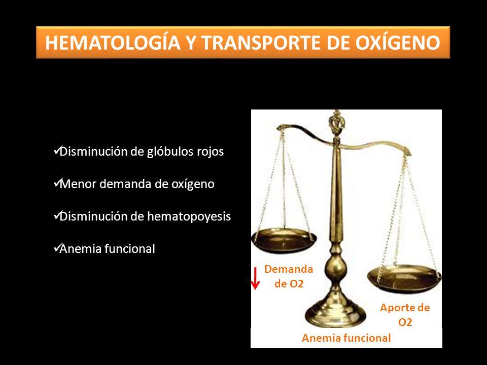 Disminución de glóbulos rojos Menor demanda de oxígeno Disminución de hematopoyesis Anemia funcional Demanda de O2 Aporte de O2 Anemia funcional HEMATOLOGÍA Y TRANSPORTE DE OXÍGENO