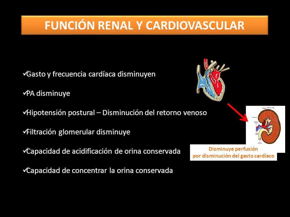 Gasto y frecuencia cardíaca disminuyen PA disminuye Hipotensión postural – Disminución del retorno venoso Filtración glomerular disminuye Capacidad de acidificación de orina conservada Capacidad de concentrar la orina conservada Disminuye perfusión por disminución del gasto cardíaco FUNCIÓN RENAL Y CARDIOVASCULAR