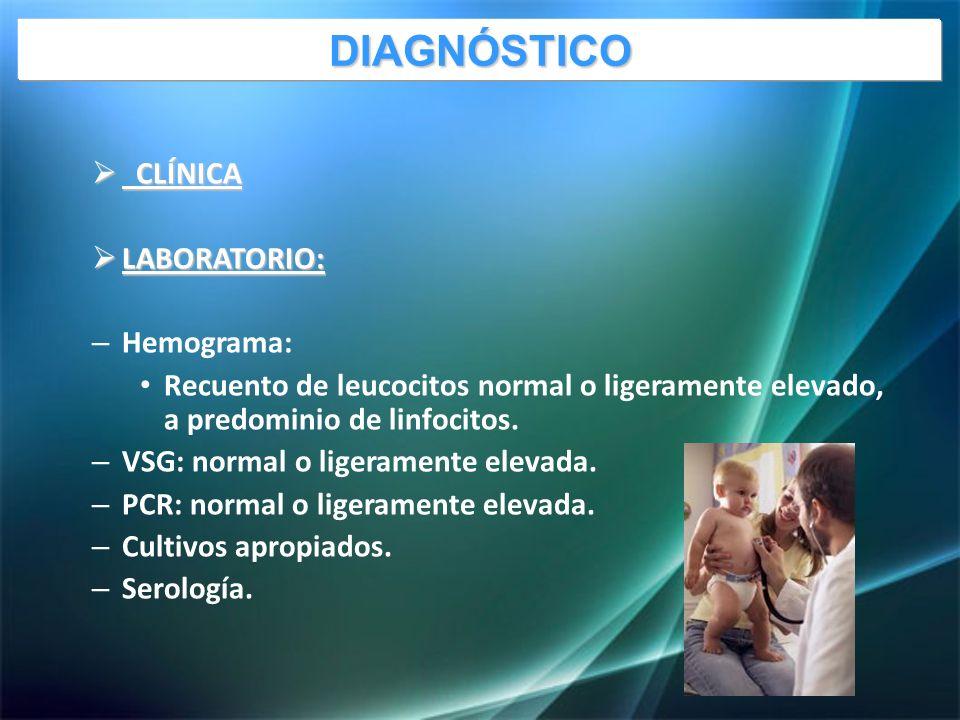 CLÍNICA CLÍNICA LABORATORIO: LABORATORIO: – Hemograma: Recuento de leucocitos normal o ligeramente elevado, a predominio de linfocitos.
