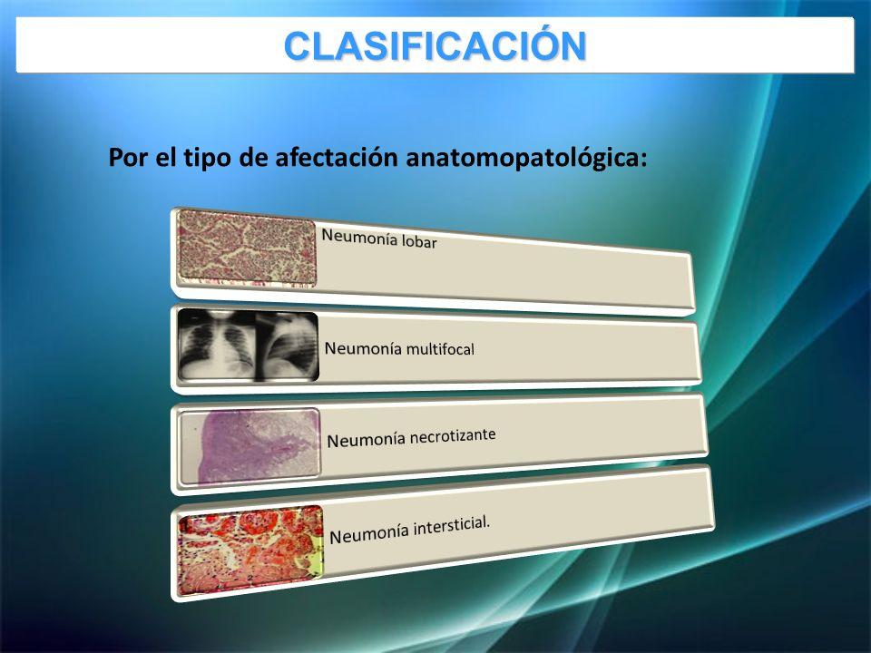 Por el tipo de afectación anatomopatológica: CLASIFICACIÓN