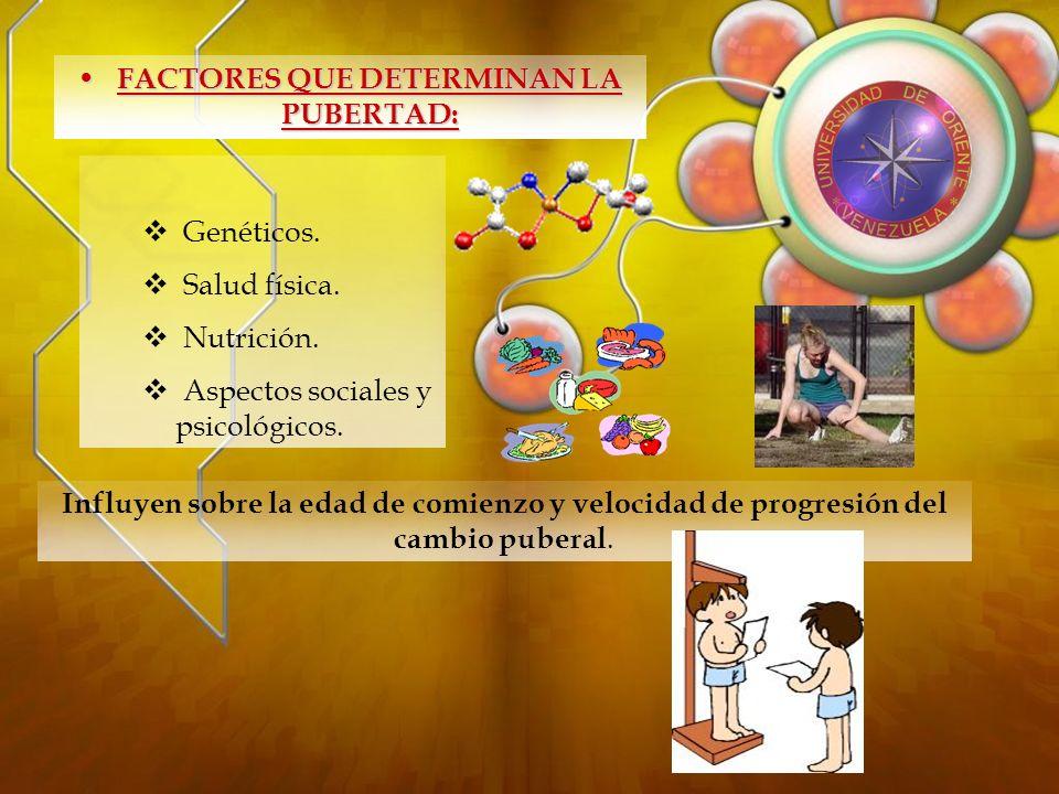 DESARROLLO BIOLOGICO: Crecimiento se acelera : 6 – 7 cm/año Peso que representa el 40% del peso en el adulto.
