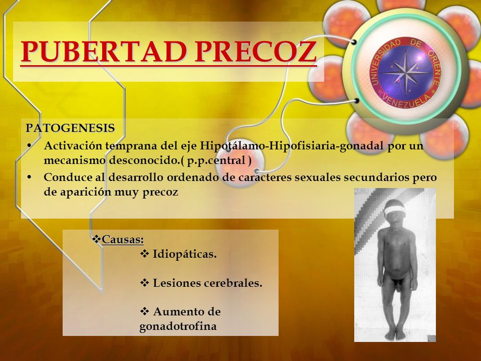 DESARROLLO BIOLÓGICO: Crecimiento de los testículos (9 ½ años).