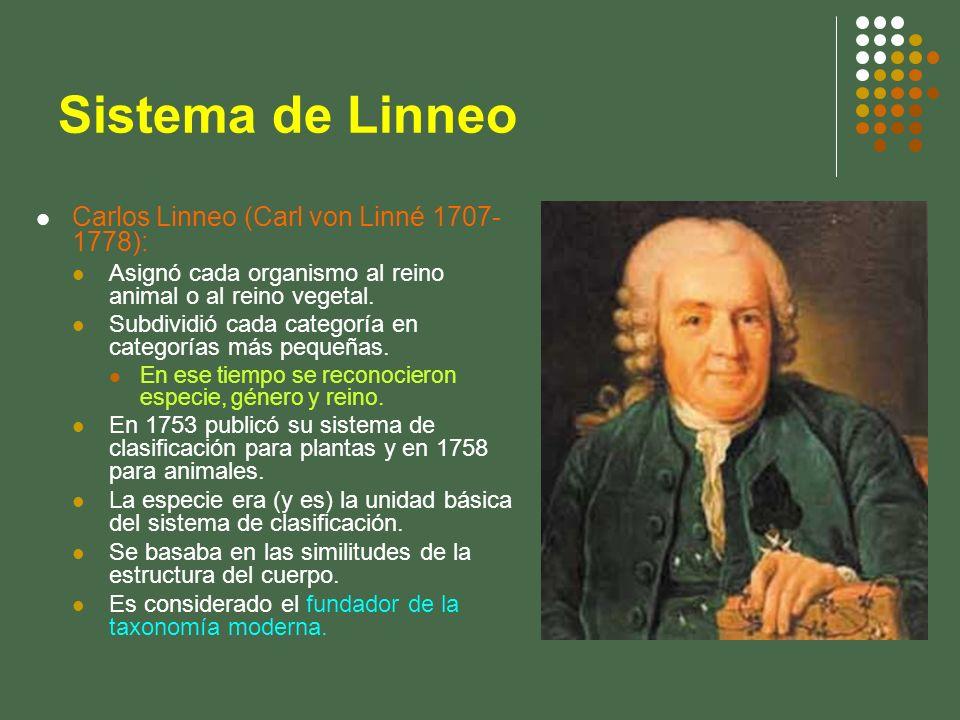Sistema de Linneo Carlos Linneo (Carl von Linné 1707- 1778): Asignó cada organismo al reino animal o al reino vegetal. Subdividió cada categoría en ca
