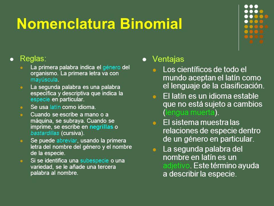 Nomenclatura Binomial Reglas: La primera palabra indica el género del organismo. La primera letra va con mayúscula. La segunda palabra es una palabra
