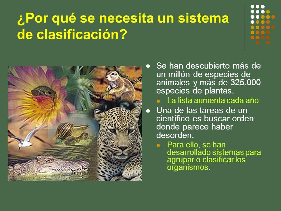 ¿Por qué se necesita un sistema de clasificación? Se han descubierto más de un millón de especies de animales y más de 325.000 especies de plantas. La