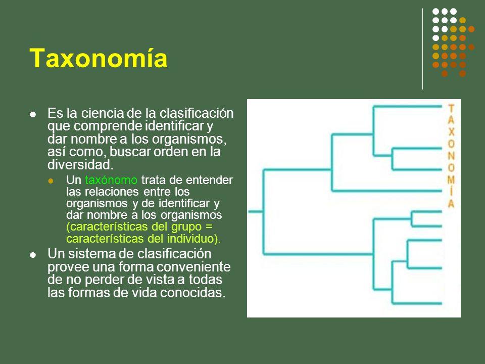 Taxonomía Es la ciencia de la clasificación que comprende identificar y dar nombre a los organismos, así como, buscar orden en la diversidad. Un taxón