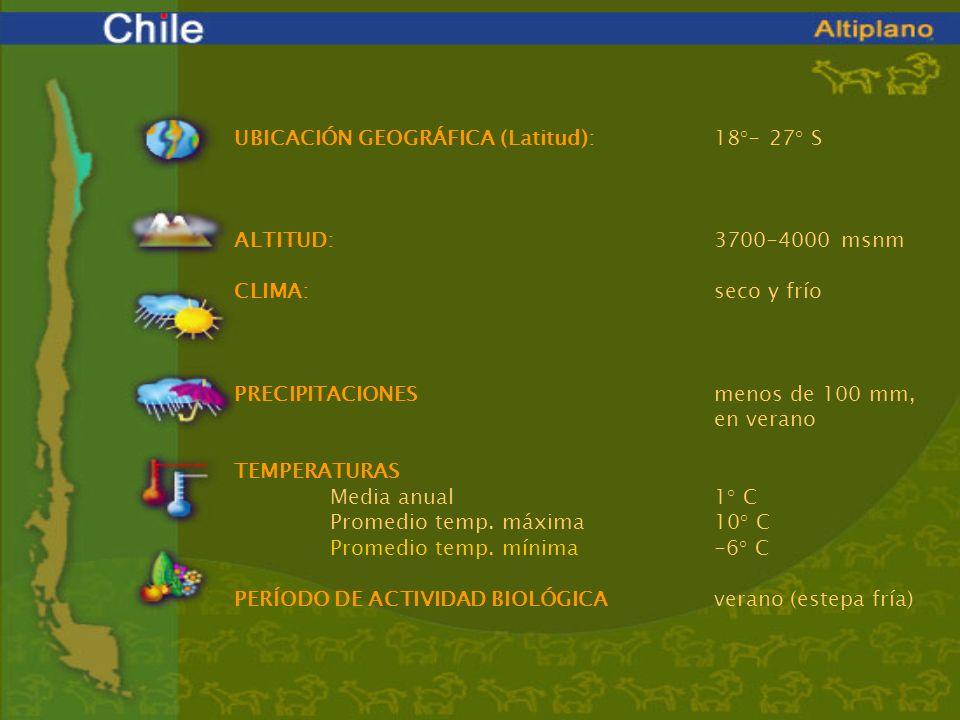 UBICACIÓN GEOGRÁFICA (Latitud):18°- 27° S ALTITUD: 3700-4000 msnm CLIMA:seco y frío PRECIPITACIONESmenos de 100 mm, en verano TEMPERATURAS Media anual