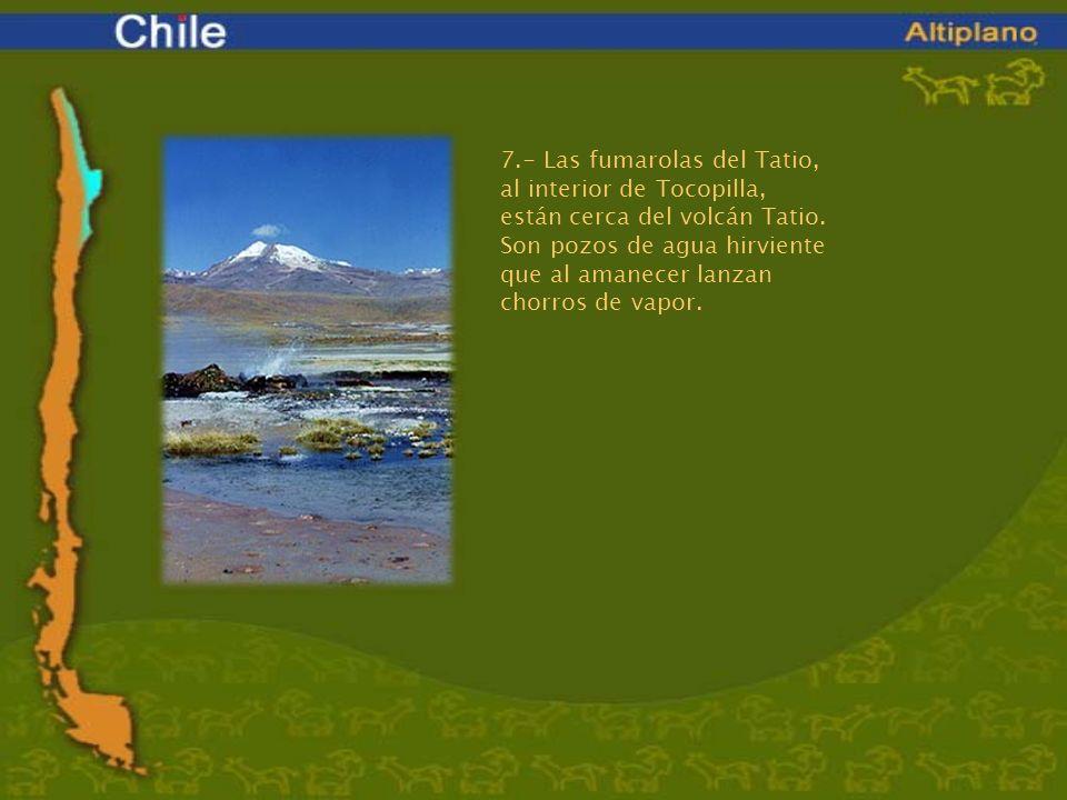 7.- Las fumarolas del Tatio, al interior de Tocopilla, están cerca del volcán Tatio. Son pozos de agua hirviente que al amanecer lanzan chorros de vap