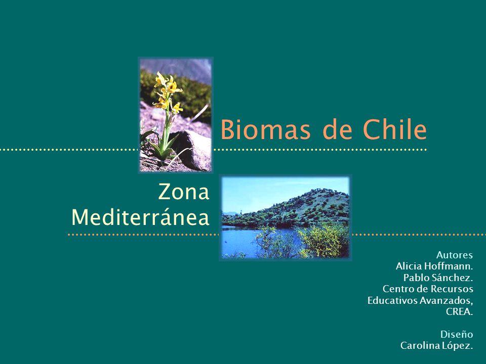 Biomas de Chile Zona Mediterránea Autores Alicia Hoffmann. Pablo Sánchez. Centro de Recursos Educativos Avanzados, CREA. Diseño Carolina López.