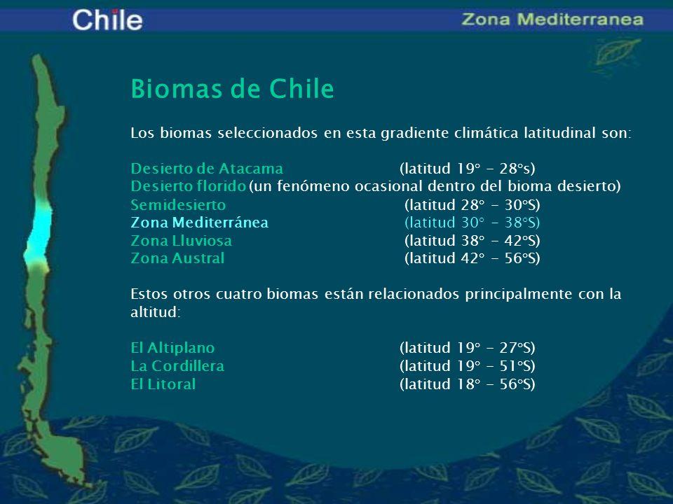 UBICACIÓN GEOGRÁFICA (Latitud)33° - 38° S ALTITUD200 a 2.500 msnm CLIMAmediterráneo PRECIPITACIONES250 - 700 mm al año aumentando de norte a sur,en invierno TEMPERATURA Media anual14° C Promedio temp.
